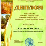 Игнатьев Миша конкурс чтецов Диплом